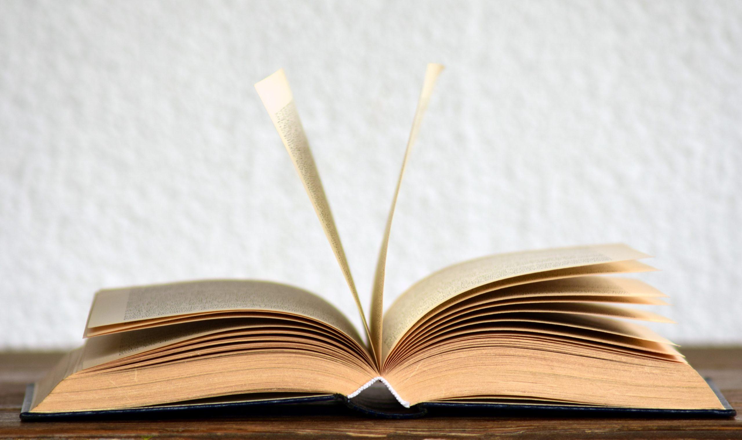 Ein Hoch aufs Buch!